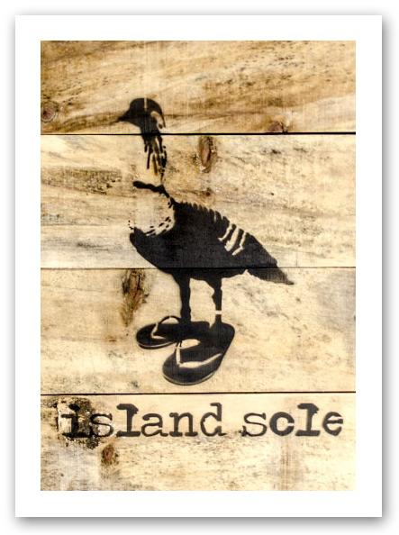 IslandSole1