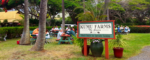 Kumu Farms Pie Tweetup